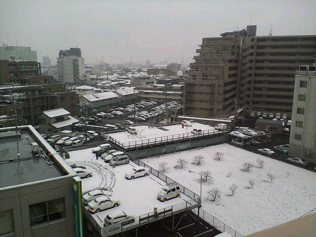 雪降る朝♪