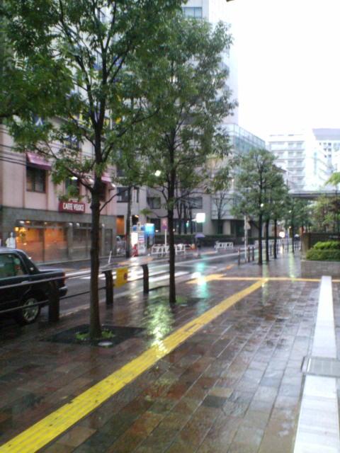 雨ですね♪