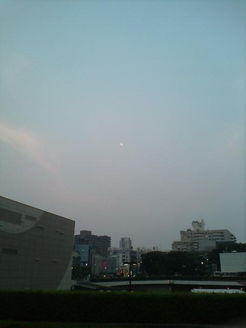 月が綺麗です(^-^)