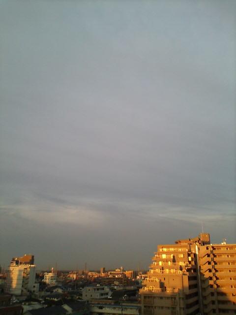 綺麗な夜明けです(^-^)