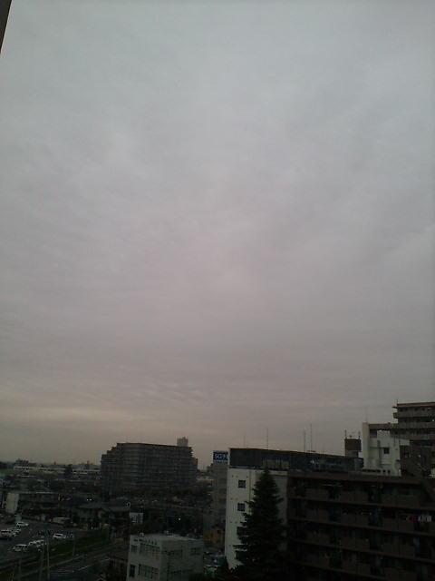 ぐっと冷えた朝(^-^)