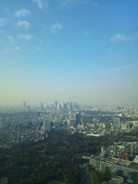 53階からの眺望♪
