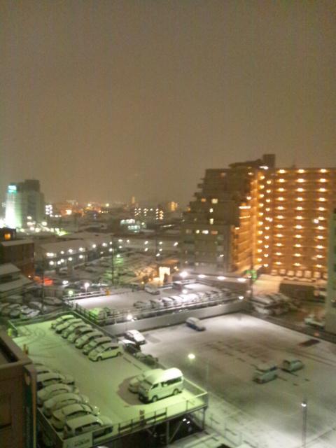 雪が降る♪