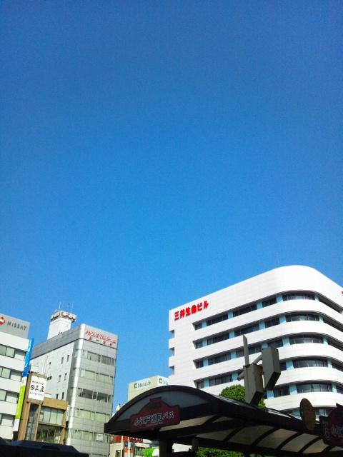 青空が広がりました♪