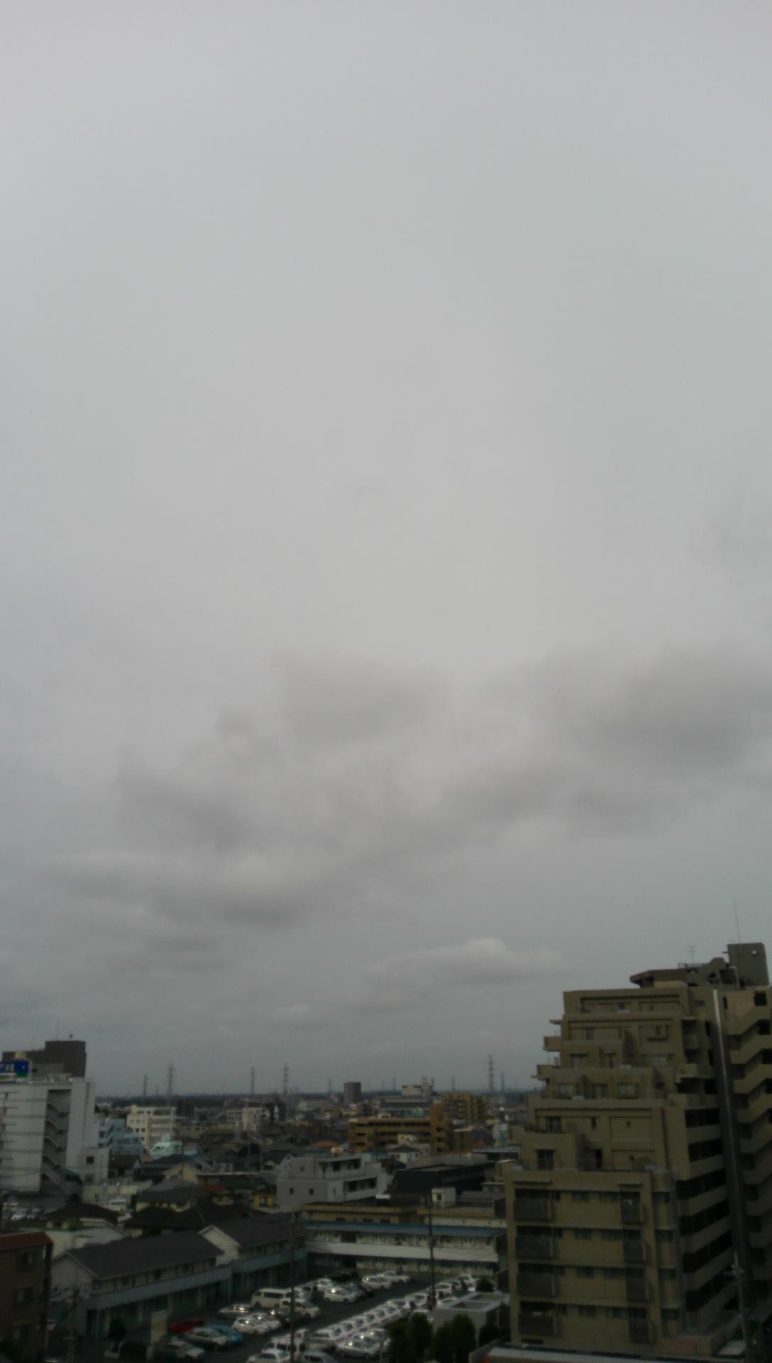 7月1日の朝です♪(^O^)