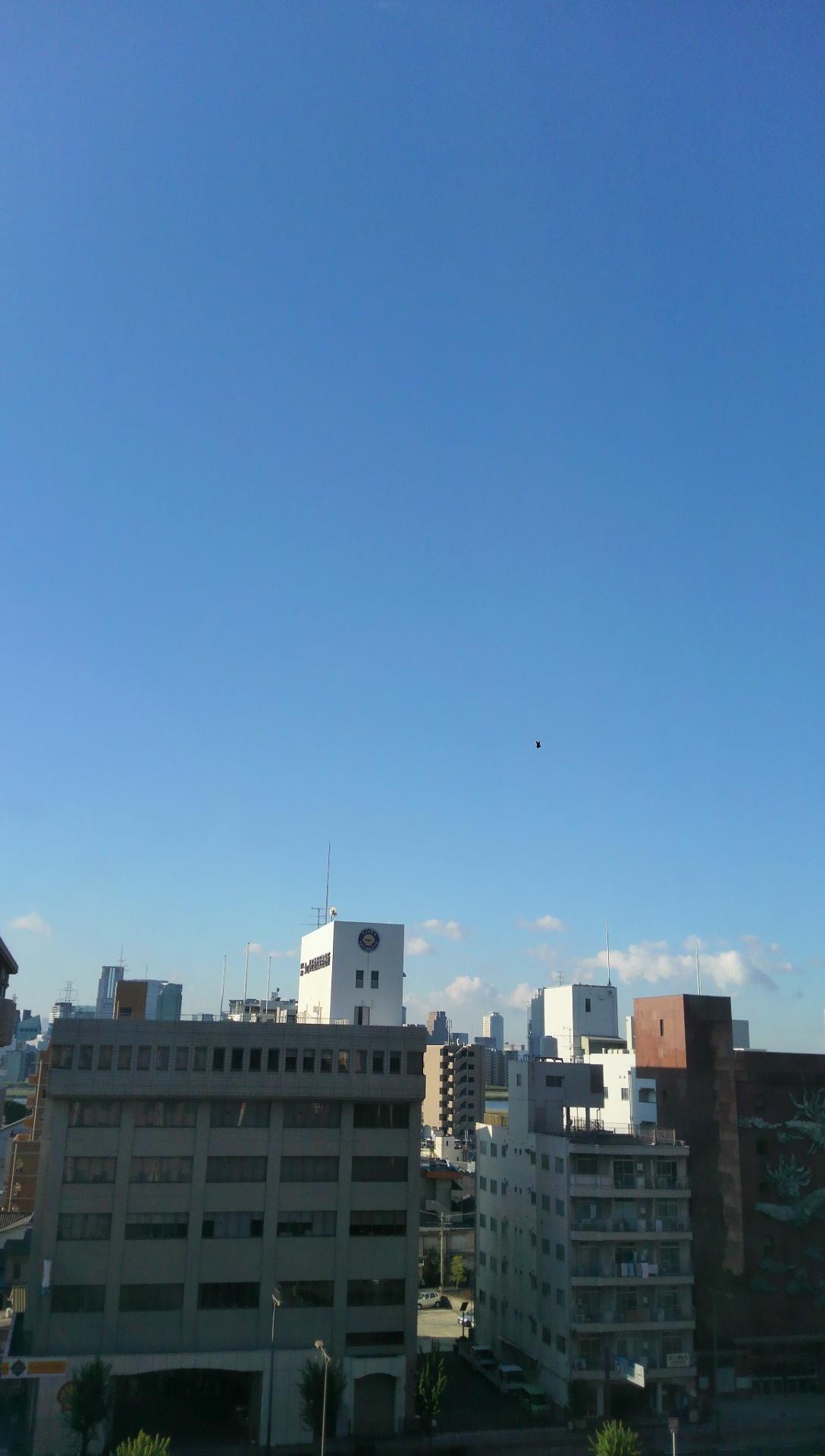 大阪遠征最終日